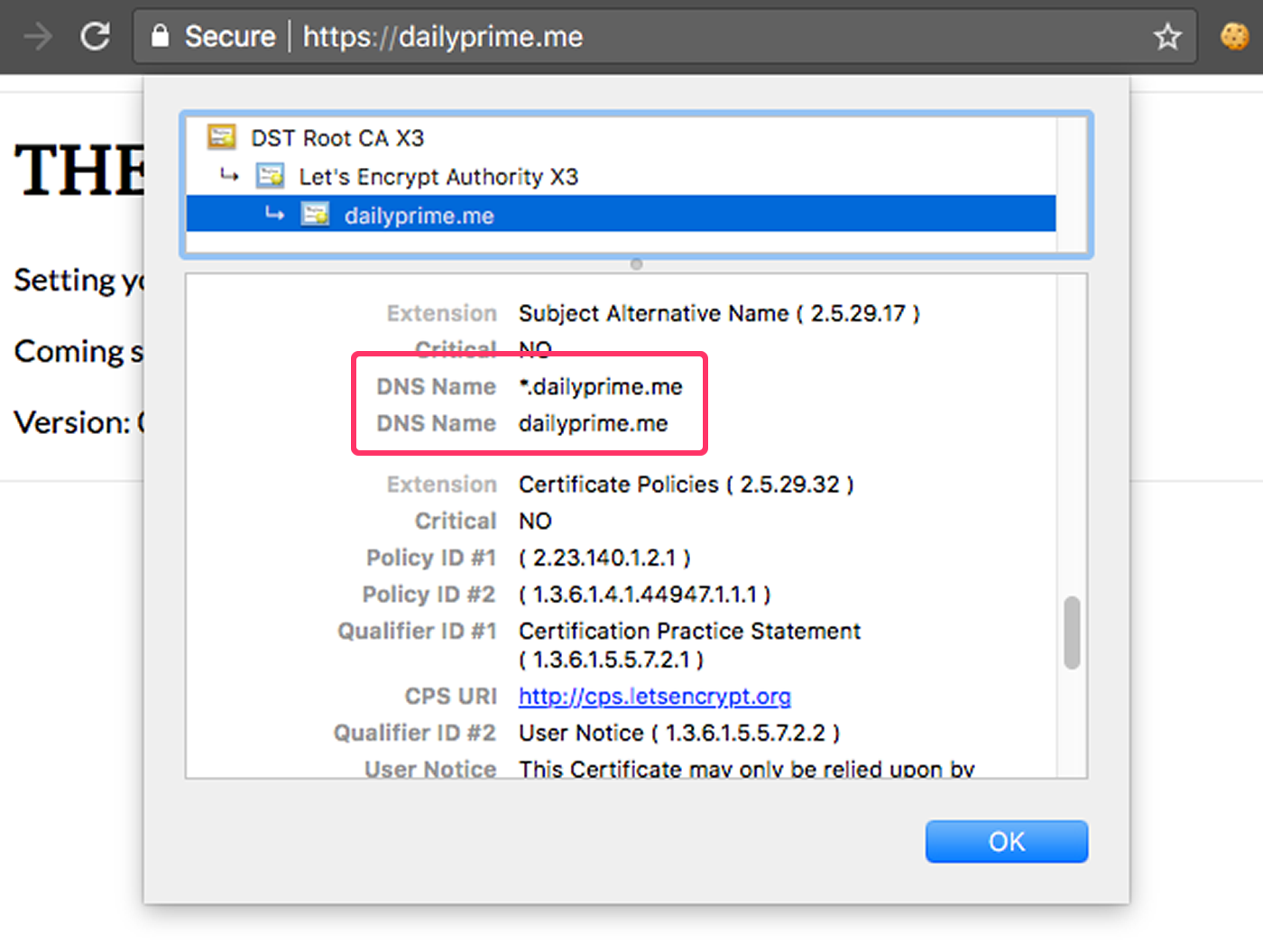 LetsEncrypt wildcard SSL certificate issued.