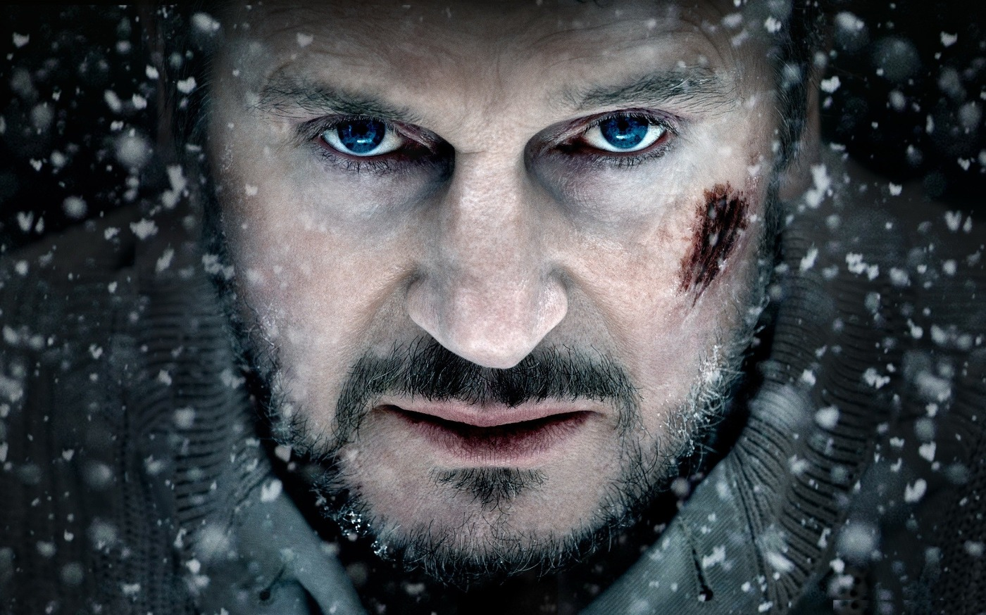 Liam Neeson in The Grey, staring solemnly.